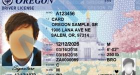 Requisitos para que los indocumentados puedan sacar una licencia de manejo en USA